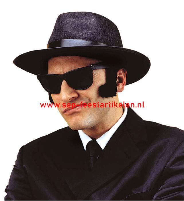 d01f259c3ad676 Bril zwart Blues Brother direct leverbaar! - SEP Feestartikelen